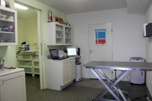 dierenkliniek-lunetten-utrecht-apparatuur-behandelkamer-3