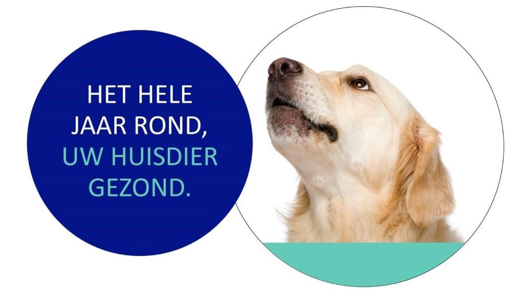 huisdieren zorgplan2