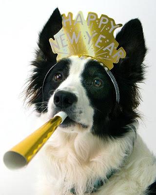 happynewyeardog